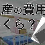 妊娠・出産の費用・総額(私の実例)全部で12万円の内訳は?